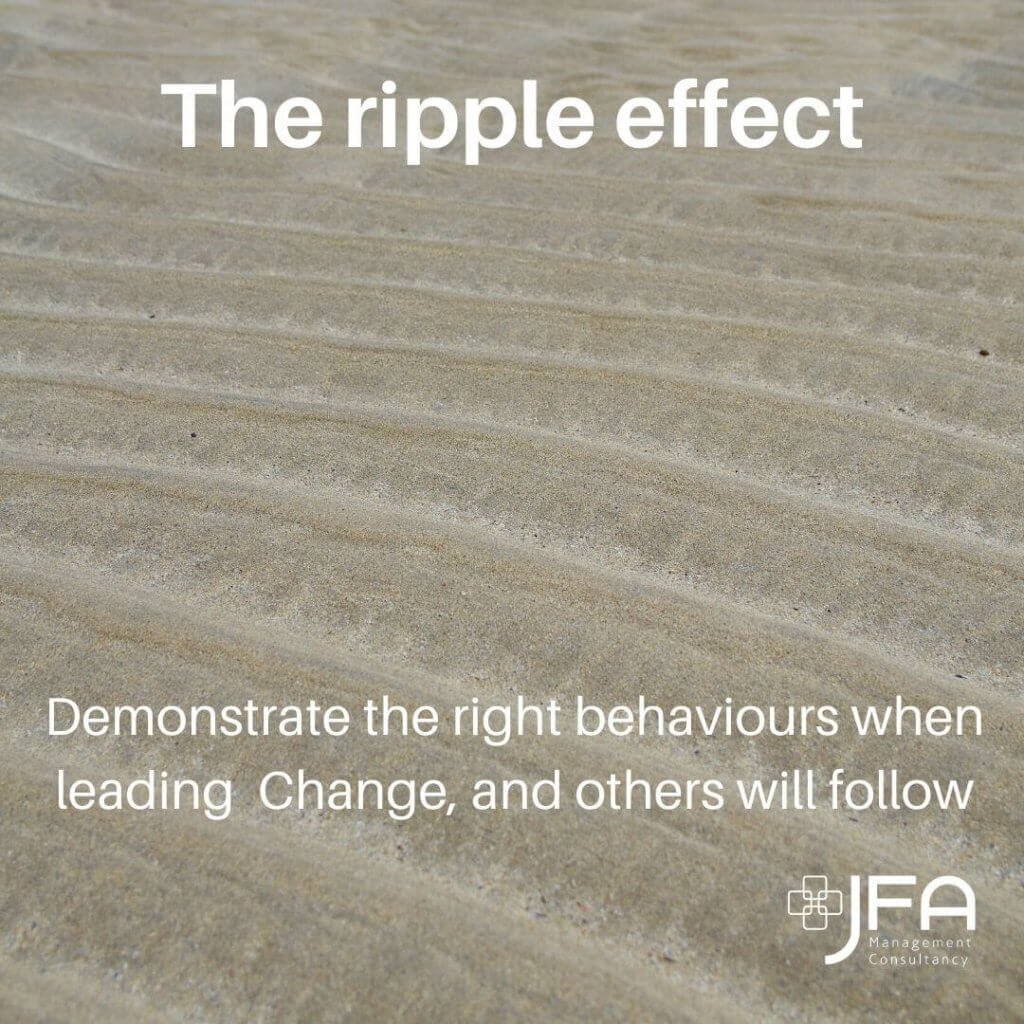 The Ripple Effect - JFA, Jane Fisher Associates, Management Consultants, Leadership & Managing Change